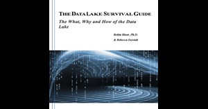 Image for The Data Lake Survival Guide: The What, Why and How of the Data Lake