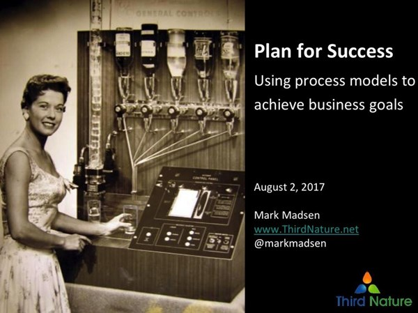 Image for Plan for Success: Using Process Models to Achieve Business Goals